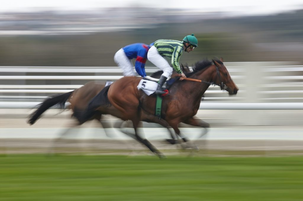 Horse races in the UK - battling it our for first place
